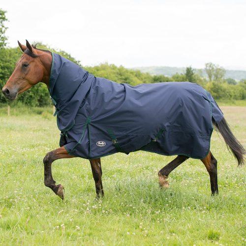 Gallop Sea Horse Lightweight Turnout Rug 1001